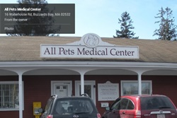 veterinarian in cape cod