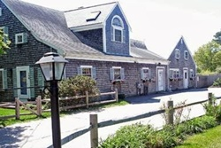 doggy cay care in cape cod
