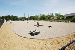 dog park in provincetown, cape cod